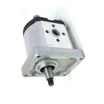 418-1672 4181672 Water Pump for Caterpillar 306E 307E Mini Hydraulic Excavator