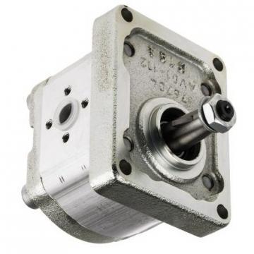 A2v107 Rexroth hydomatik pompa-Nuovo-assiale Pompa Pistone