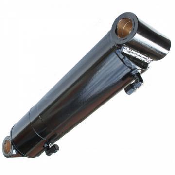 PISTONE idraulico CILINDRO IDRAULICO doppio effetto 510x60x30mm corsa 350